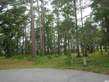 Featured Property - Lot D Cabaniss Lane