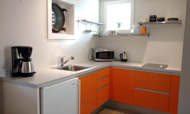 Kitchenette on lower level