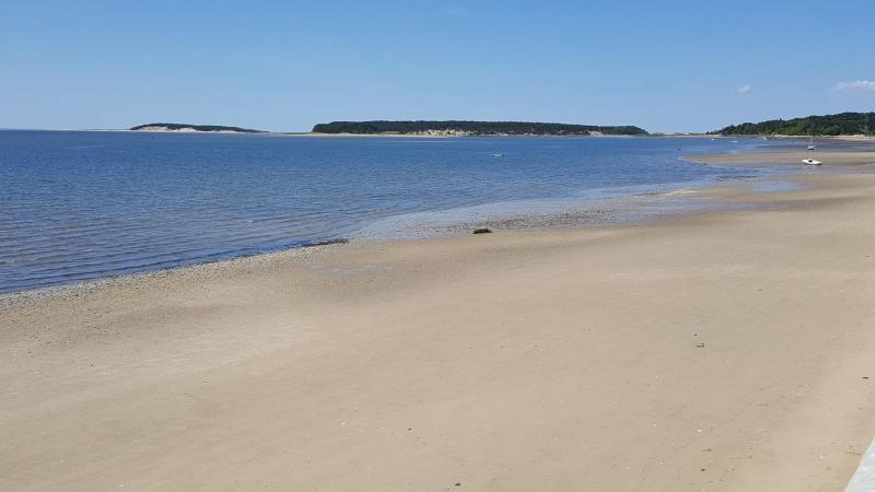 Beautiful association bay beach at Wellfleet Harbor