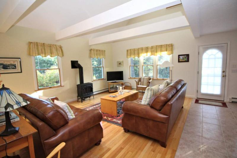 Open and bright living room with TV and gas stove