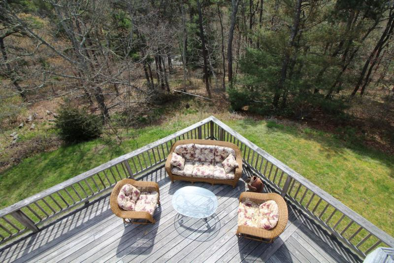 Backyard with large deck abuts conservation land