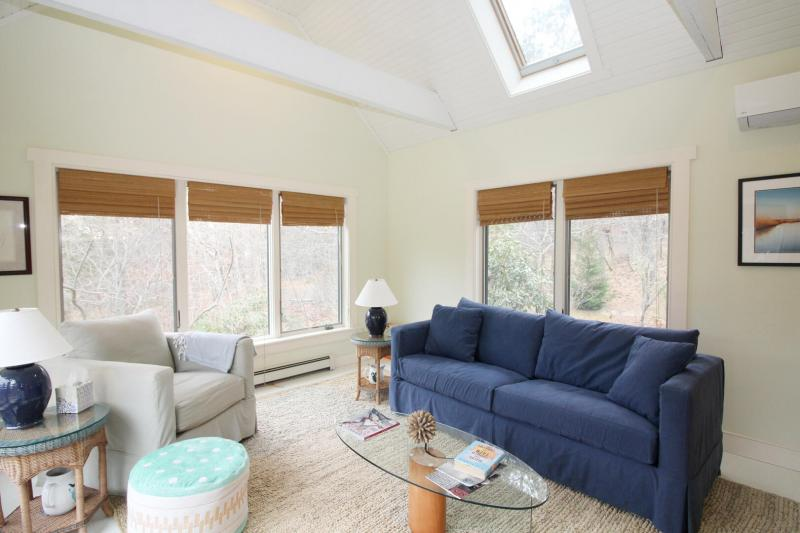 Bright and comfortable sun room with sleep sofa