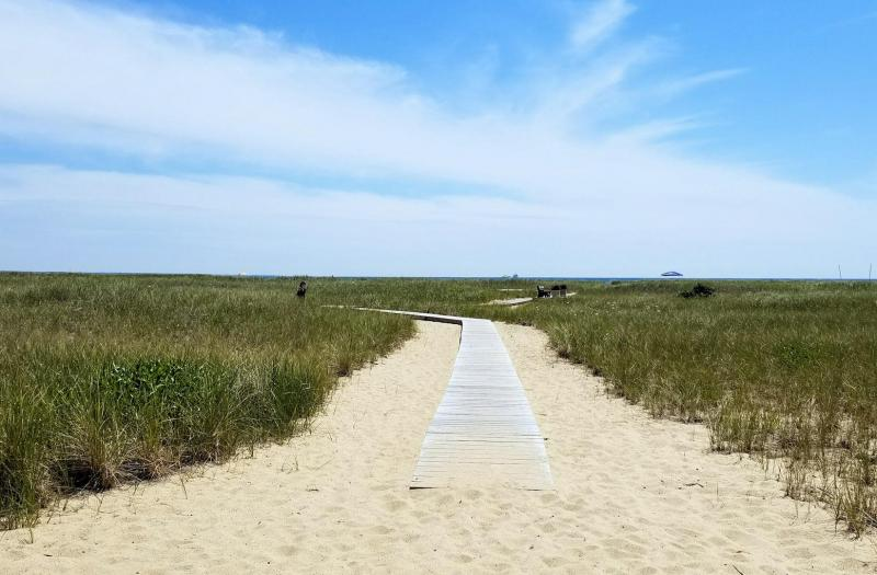 Follow the boardwalk to the beach