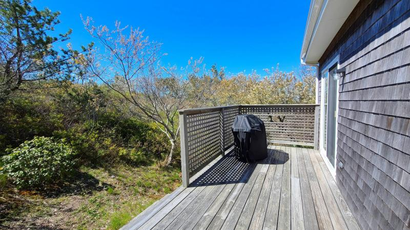 Back deck with gas grill off kitchen