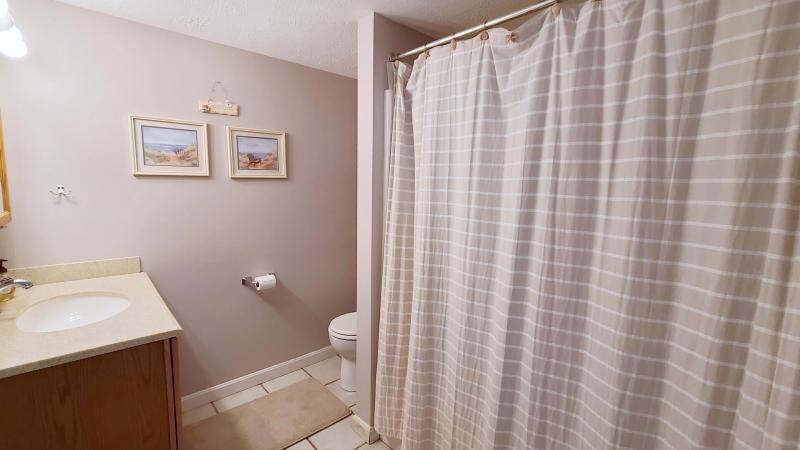 Lower level bathroom with shower and tub