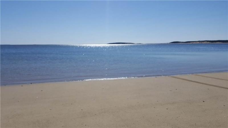 Wellfleet Bay