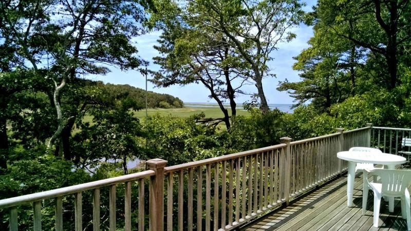 Tidal marsh views from large deck