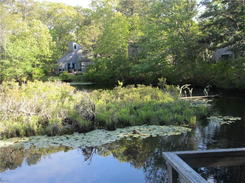 Pond on property