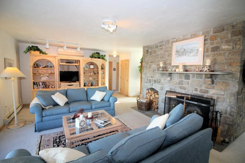 Comfortable living room with AC and Blackfish Creek view