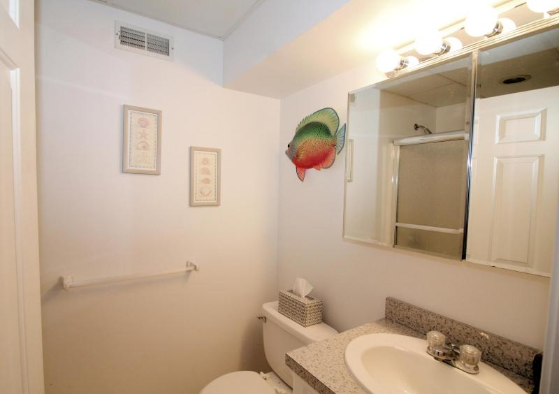 Lower level ensuite bathroom with tub and shower
