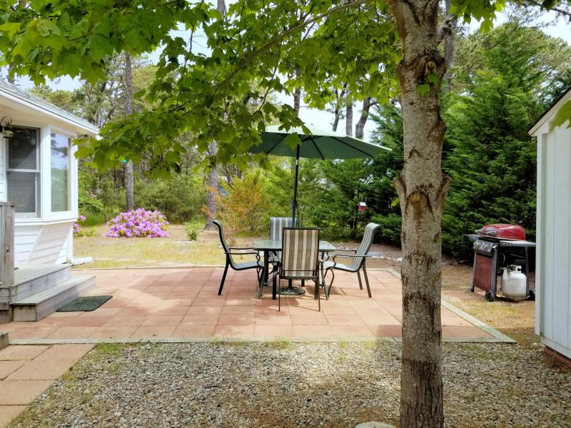 Nicely maintained yard with patio and grill
