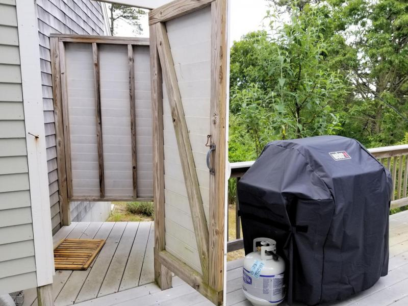 Enclosed outdoor shower and gas grill