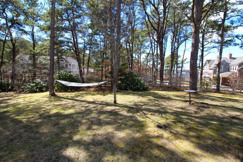 Enjoy a good book and a relaxing swing in the hammock
