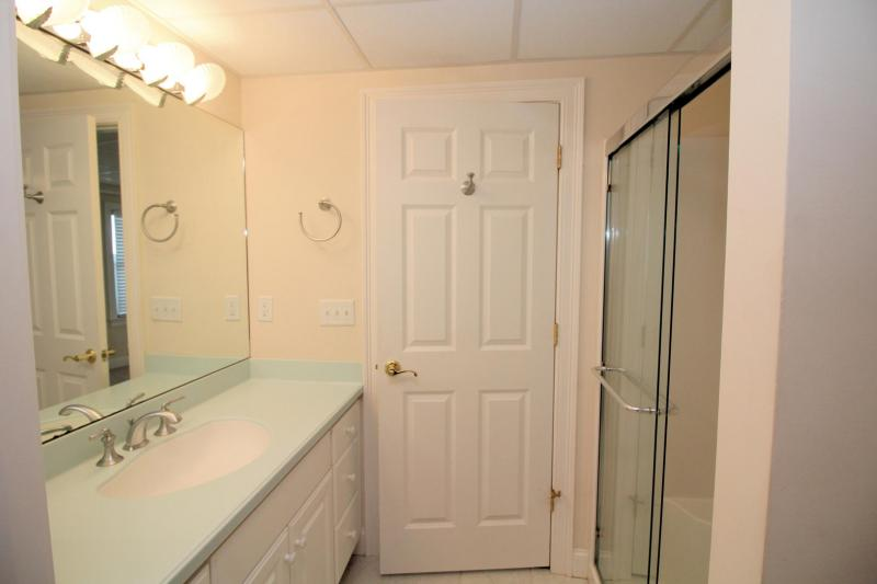 Lower level full bathroom with shower