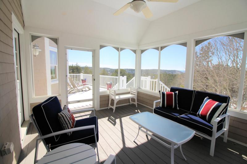 Comfortable furniture on screen porch