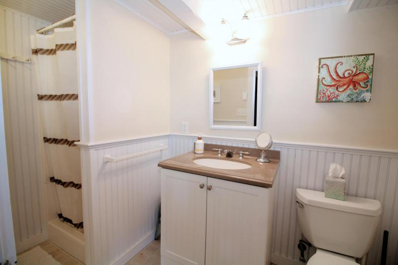 Lower level bedroom with shower