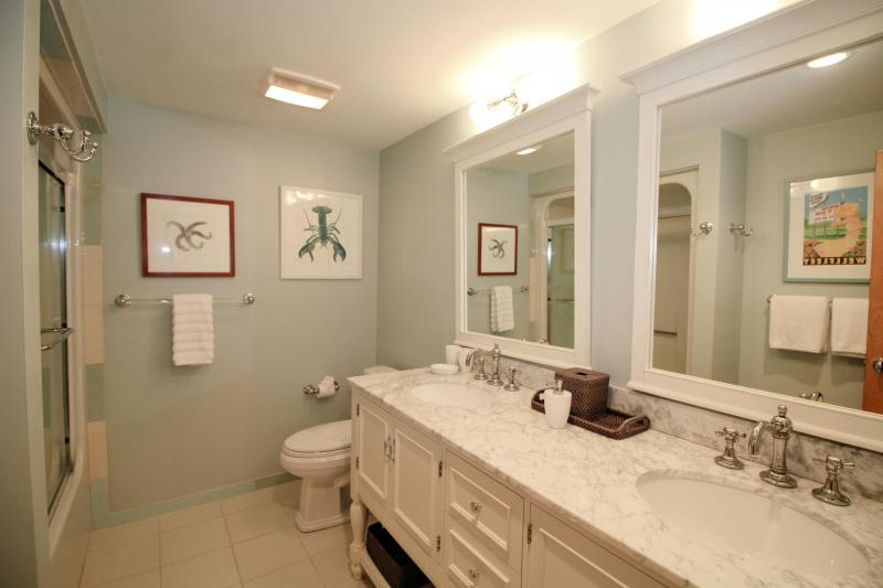 Lower level bathroom with combination tub and shower