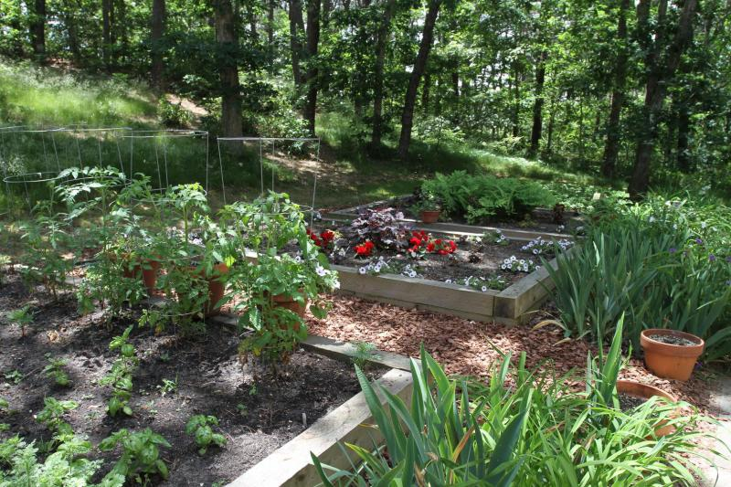 Wonderful garden beds on the property