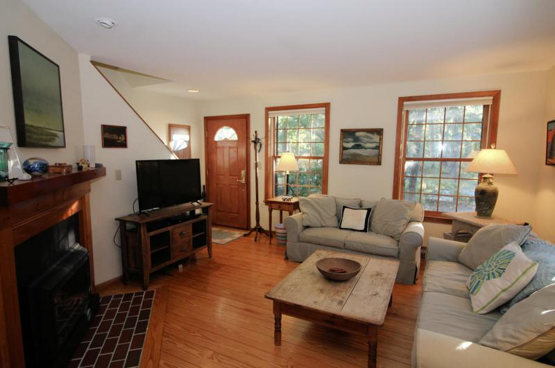 Comfortable living room with TV and fireplace with gas insert