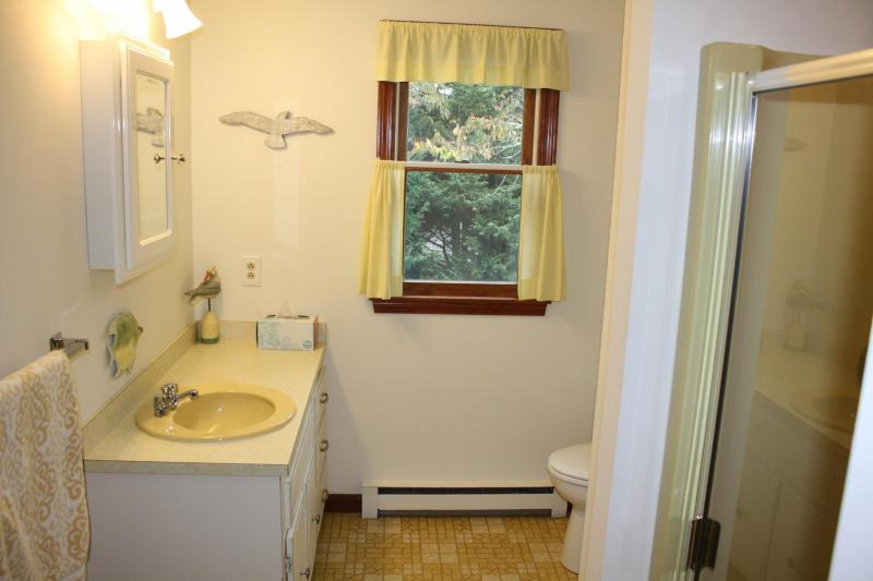 Upper Level Bathroom with Shower in Queen Bedroom