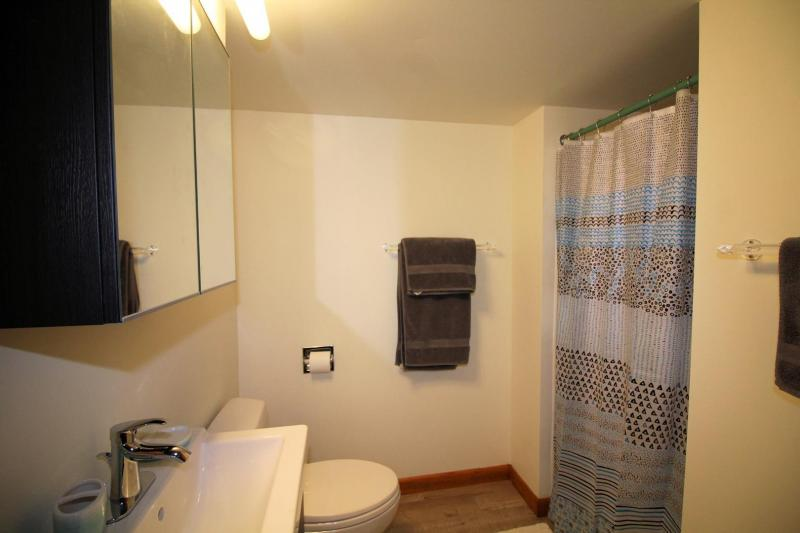 Lower level bathroom with stall shower